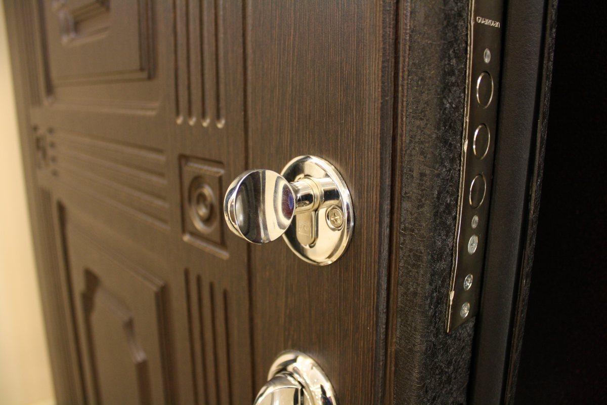 stalnye-dveri