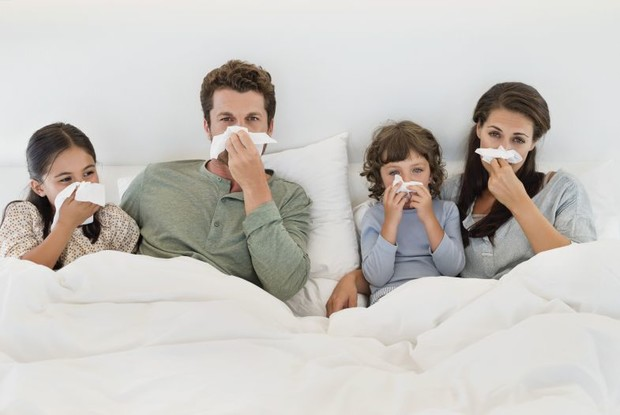 Товары для аллергиков
